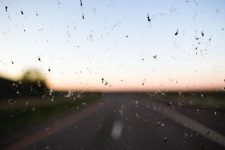 visibilidad tratamiento antimosquitos