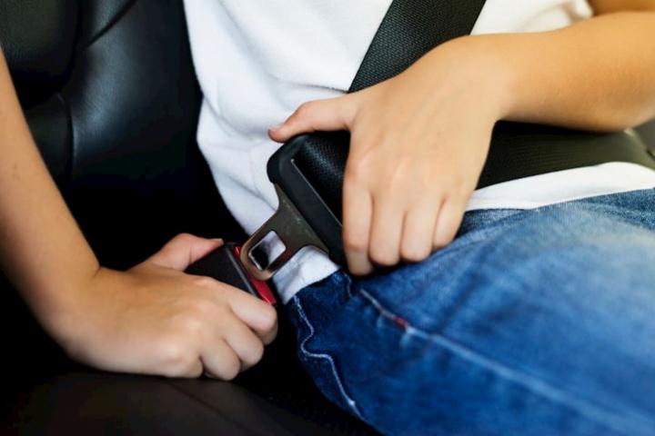 Tipos de cinturones de seguridad.
