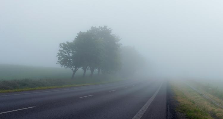 qué luces antiniebla son obligatorias en carretera