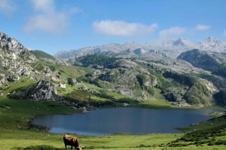 Lagos de Covadonga en coche